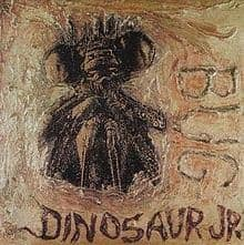 dinosaur jr bug
