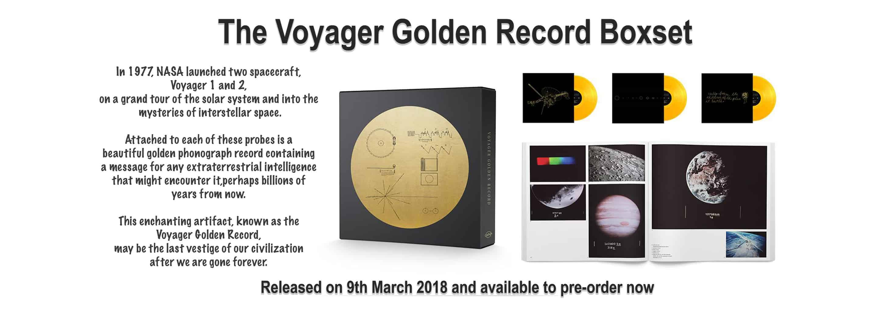 Nasa Golden Voyager Record, Vinyl