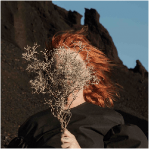goldfrapp, silver eye