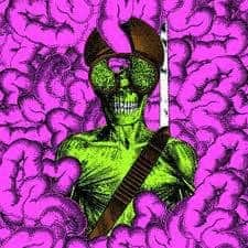 thee oh sees, carrion crawler/the dream, vinyl lp, cd