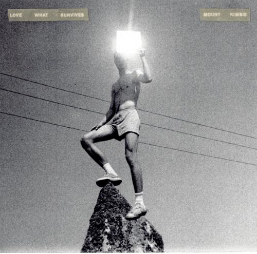 mount kimbie, love what survives, Ltd White Vinyl, vinyl , cd