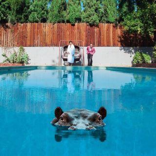 Sparks, Hippopotamus, Picture Disc, Vinyl lp, CD