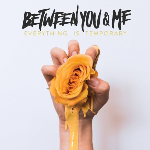 Between You & Me , Everything Is Temporary,Hopeless Records, Vinyl LP, CD.